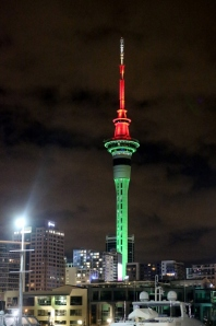NZ1_2719 (530x800)
