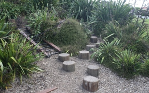 NZ1_2796 (800x499)
