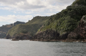 NZ1_3020 (800x521)