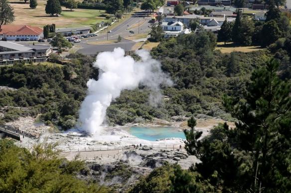 NZ1_3559 (1024x681)