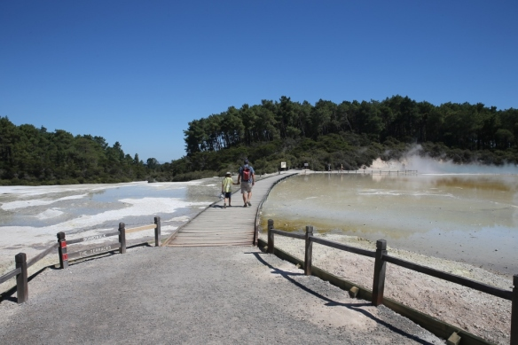 NZ1_3636 (1024x683)