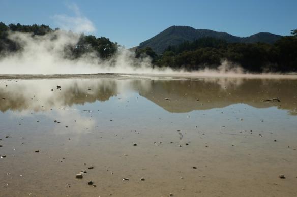 NZ1_3697 (1024x682)