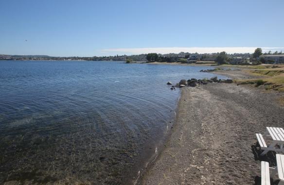 NZ1_4130 (1024x669)