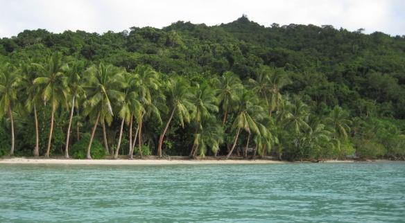 Albert Cove