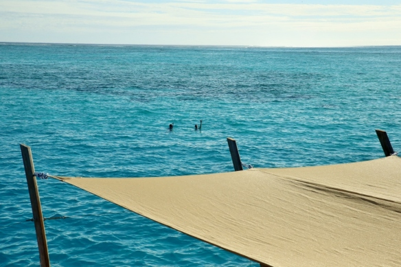 Max and Jenna snorkeling.