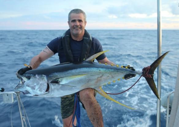 fb fish2