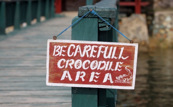 As if Komodo Dragons aren't enough of a danger!